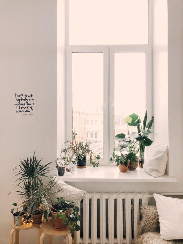 fint rent vindu