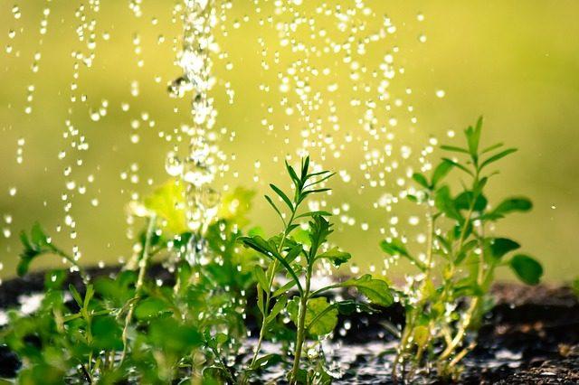 drop-of-water-2342870_640
